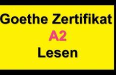 Thi đọc hiệu quả của kỳ thi A2 của viện Goethe