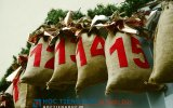 https://www.hoctiengduc.de/thumb/thumb.php?src=images/teasers/advent-calendar-1236036_640.jpg&w=160&h=100&zc=1&q=85&a=c