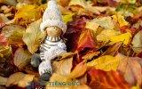 https://www.hoctiengduc.de/thumb/thumb.php?src=images/teasers/doll-figure-1827814_640.jpg&w=160&h=100&zc=1&q=85&a=c